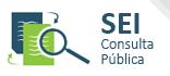 SEI consulta pública